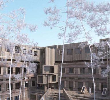 AMO Certification HQE – Restructuration et extension du Batiment A11 de l'Université de Bordeaux